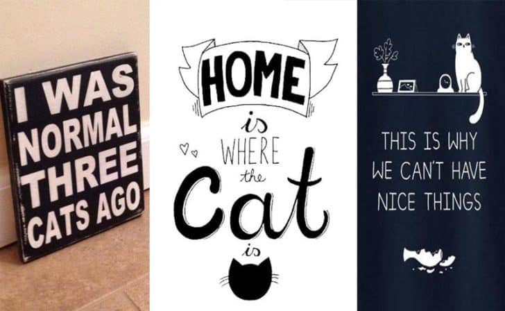 The 30 Funniest Cat Poster Quotes To Hang On Your Walls